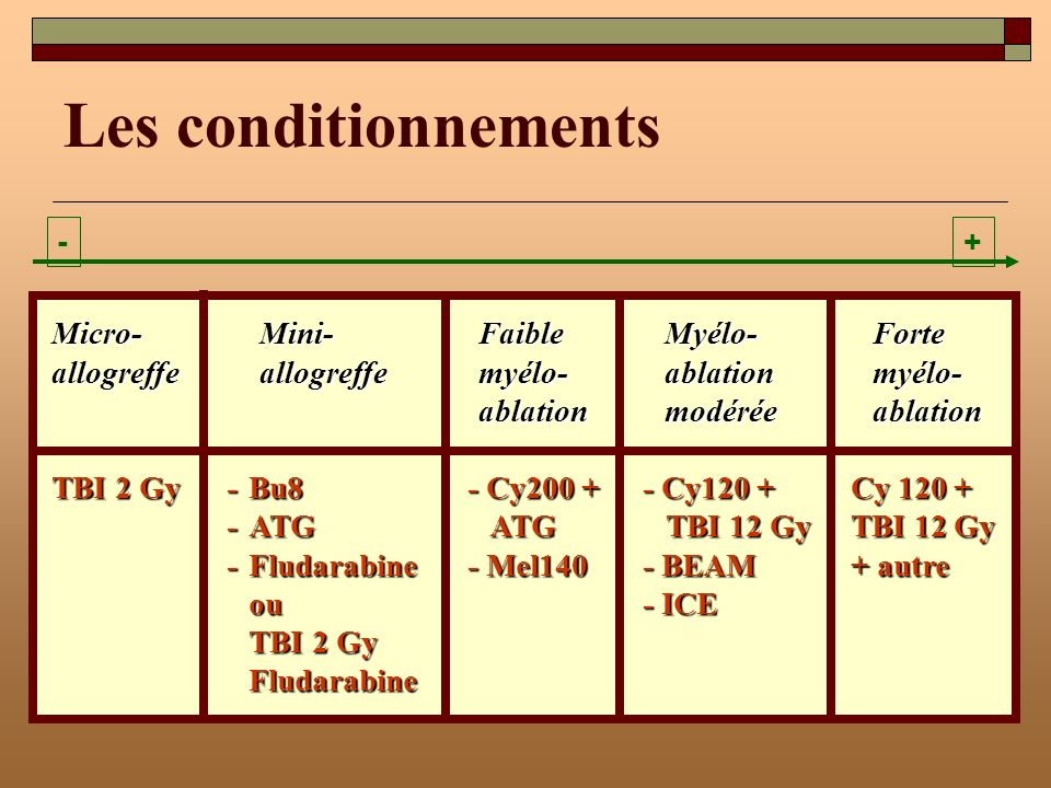 Les conditionnements -+ Micro-Mini-Faible Myélo-Forte allogreffe allogreffe myélo-ablation myélo- ablationmodéréeablation TBI 2 Gy-Bu8- Cy200 +- Cy120