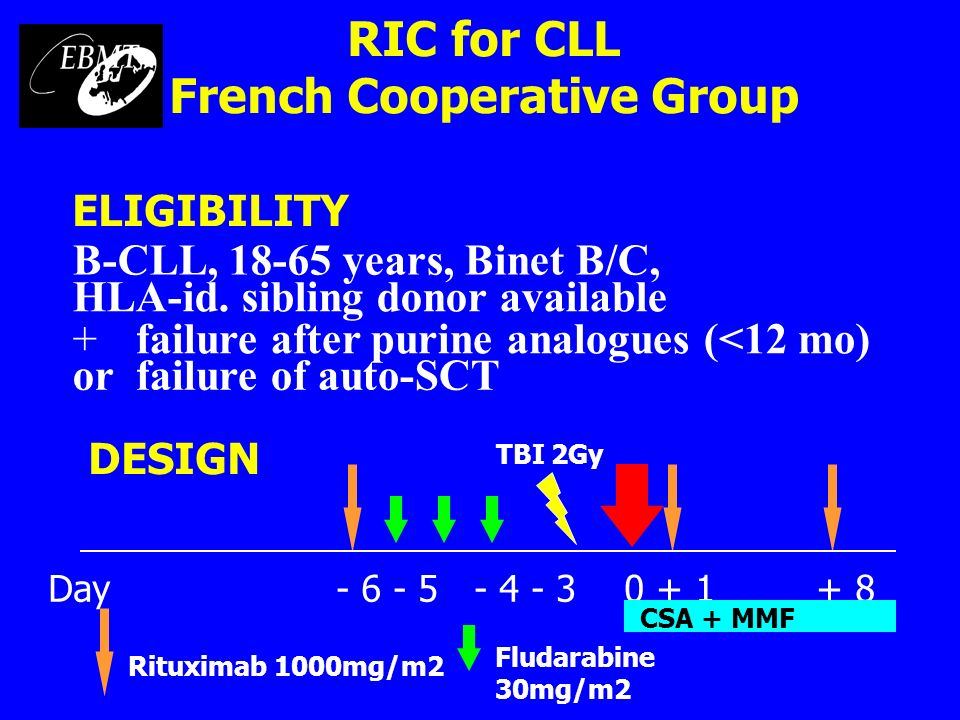 RIC for CLL French Cooperative Group Rituximab 1000mg/m2 Fludarabine 30mg/m2 DESIGN Day - 6 - 5 - 4 - 30 + 1+ 8 CSA + MMF TBI 2Gy ELIGIBILITY B-CLL, 1