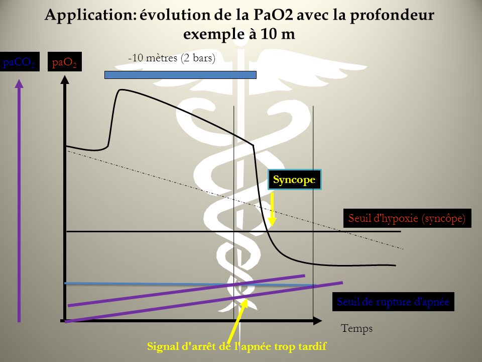 Application: évolution de la PaO2 avec la profondeur exemple à 10 m paO 2 paCO 2 Temps Seuil d'hypoxie (syncôpe) Seuil de rupture d'apnée Signal d'arr