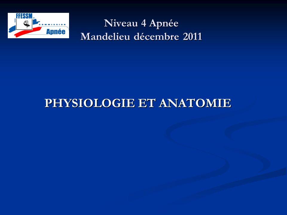 Niveau 4 Apnée Mandelieu décembre 2011 PHYSIOLOGIE ET ANATOMIE