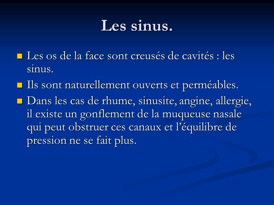 Les os de la face sont creusés de cavités : les sinus. Ils sont naturellement ouverts et perméables. Dans les cas de rhume, sinusite, angine, allergie