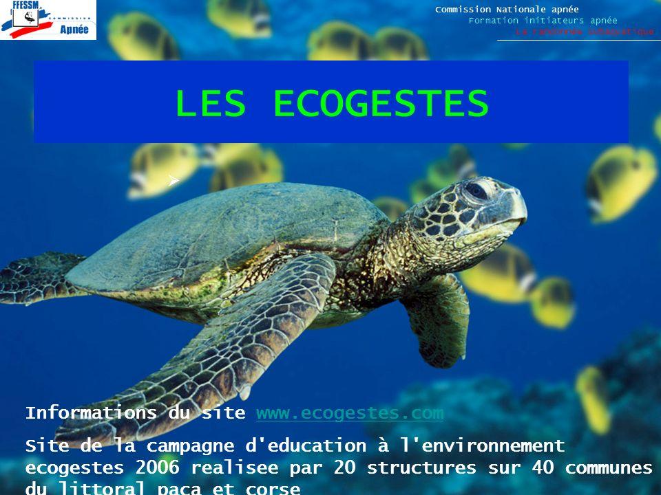 LES ECOGESTES Commission Nationale apnée Formation initiateurs apnée La randonnée subaquatique Informations du site www.ecogestes.comwww.ecogestes.com