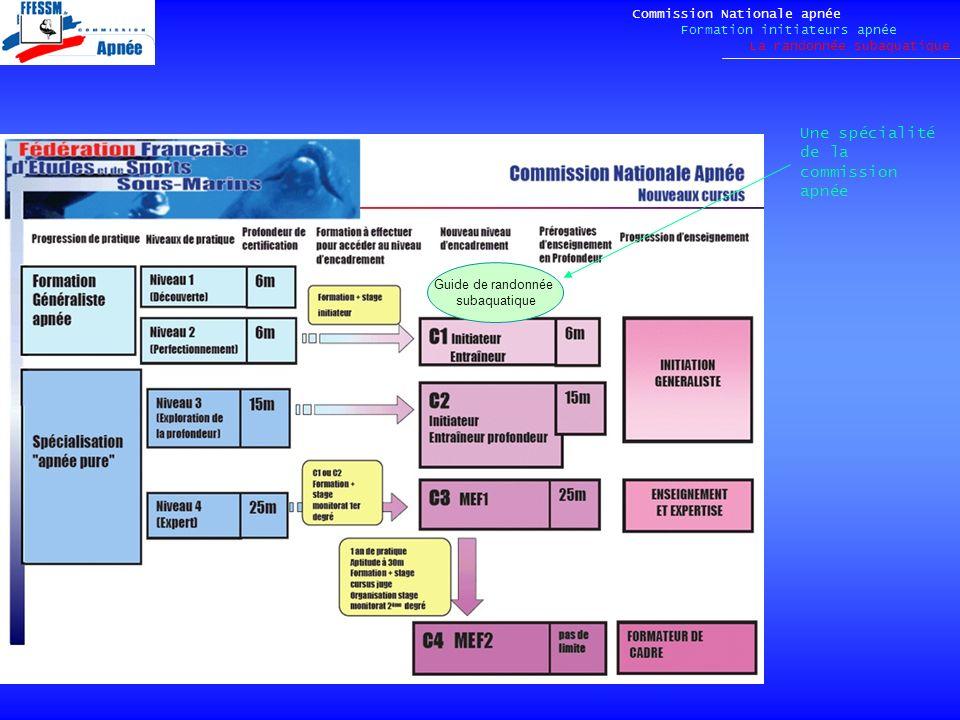 Commission Nationale apnée Formation initiateurs apnée La randonnée subaquatique Guide de randonnée subaquatique Une spécialité de la commission apnée