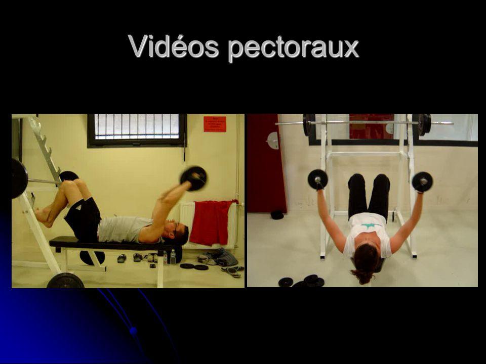 Vidéos pectoraux