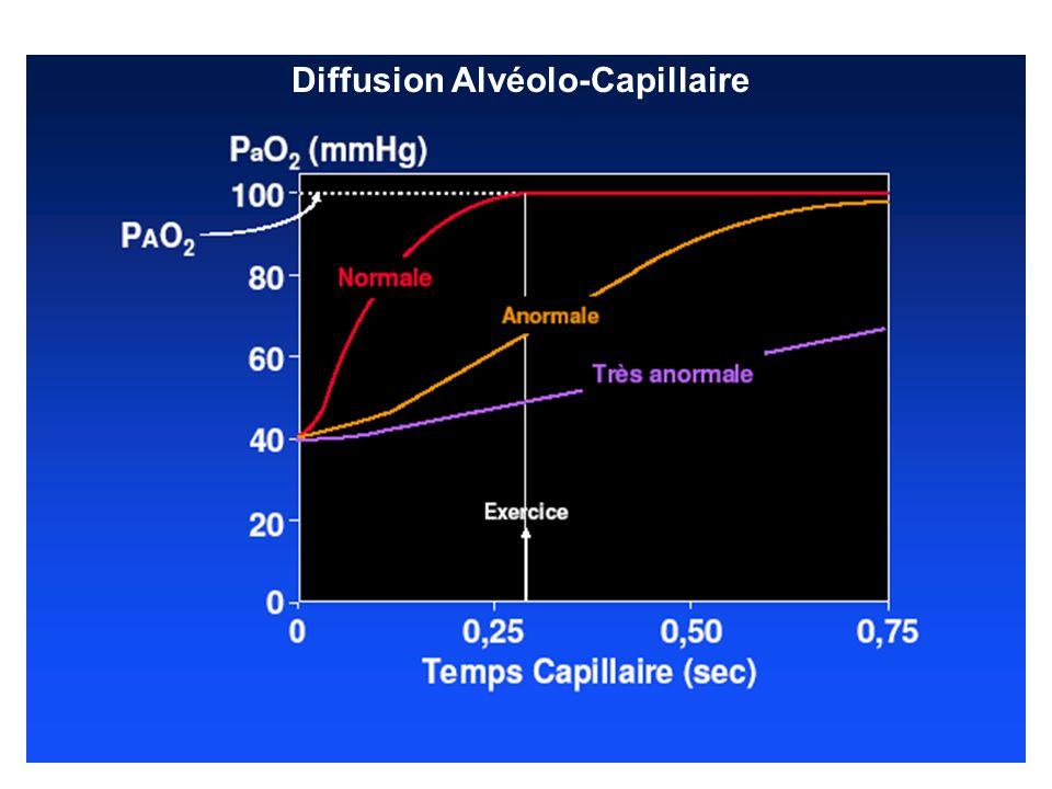 En cas daltération de la membrane alvéolo-capillaire OU daltération au niveau du lit vasculaire – du temps nécessaire à léquilibration des pressions partielles en gaz –Pa0 2 au repos est initialement normale MAIS – Pa0 2 à l effort –au stade ultime : hypoxémie de repos Le CO 2 (beaucoup plus diffusible que l 0 2 ) est normal ou (hyperventilation du fait de l hypoxémie) –PaC0 2 ne s élève quau stade ultime de la maladie 3.
