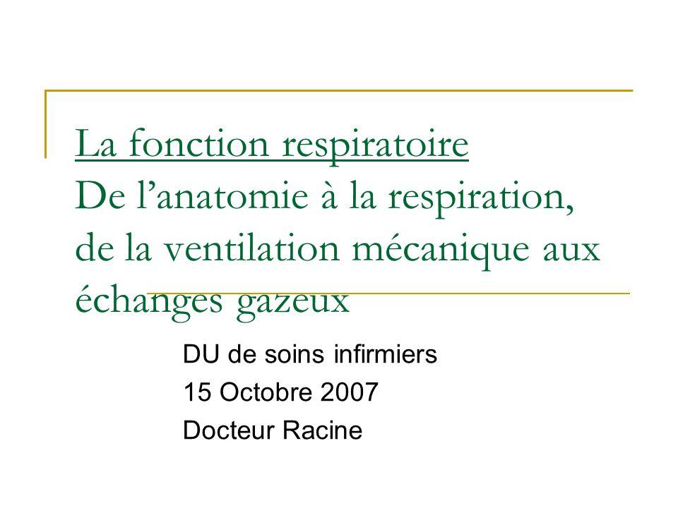 La fonction respiratoire De lanatomie à la respiration, de la ventilation mécanique aux échanges gazeux DU de soins infirmiers 15 Octobre 2007 Docteur