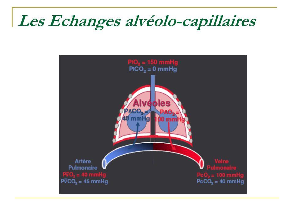 Les Echanges alvéolo-capillaires