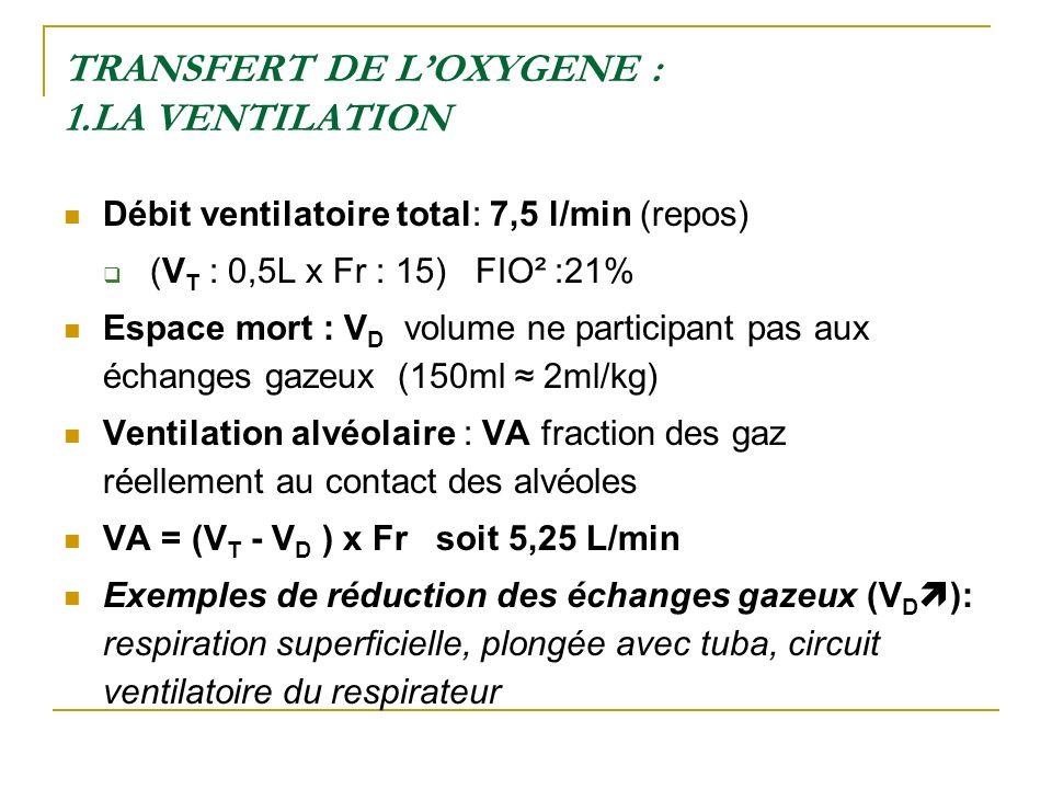 TRANSFERT DE LOXYGENE : 1.LA VENTILATION Débit ventilatoire total: 7,5 l/min (repos) (V T : 0,5L x Fr : 15) FIO² :21% Espace mort : V D volume ne part