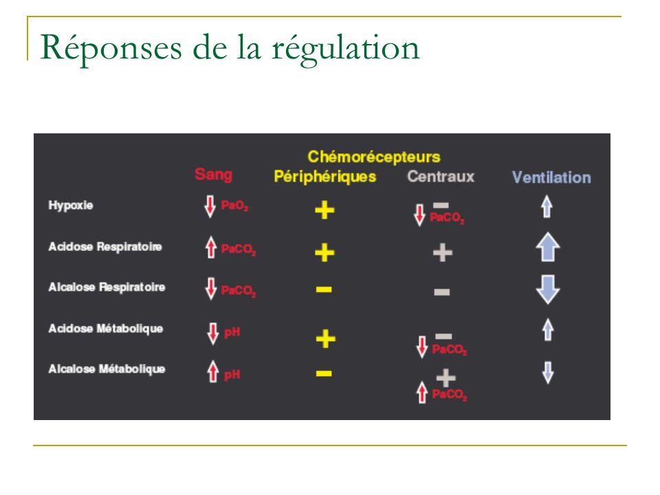 Réponses de la régulation