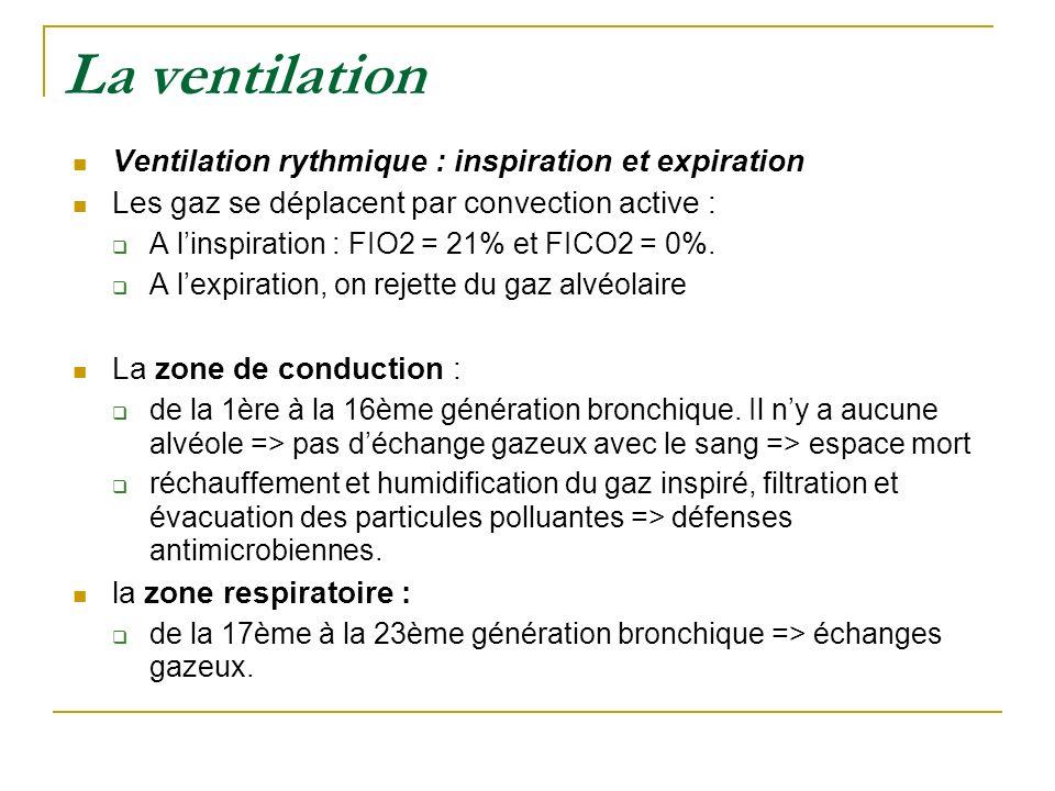 La ventilation Ventilation rythmique : inspiration et expiration Les gaz se déplacent par convection active : A linspiration : FIO2 = 21% et FICO2 = 0