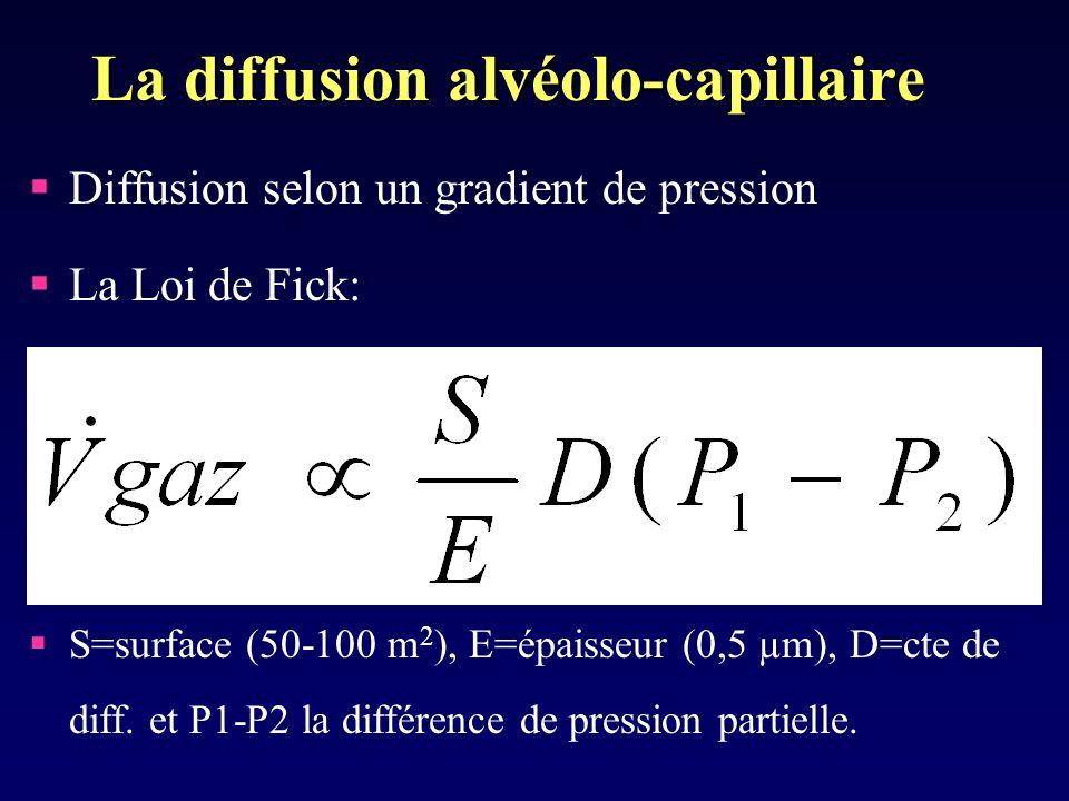 La diffusion alvéolo-capillaire Diffusion selon un gradient de pression La Loi de Fick: S=surface (50-100 m 2 ), E=épaisseur (0,5 µm), D=cte de diff.