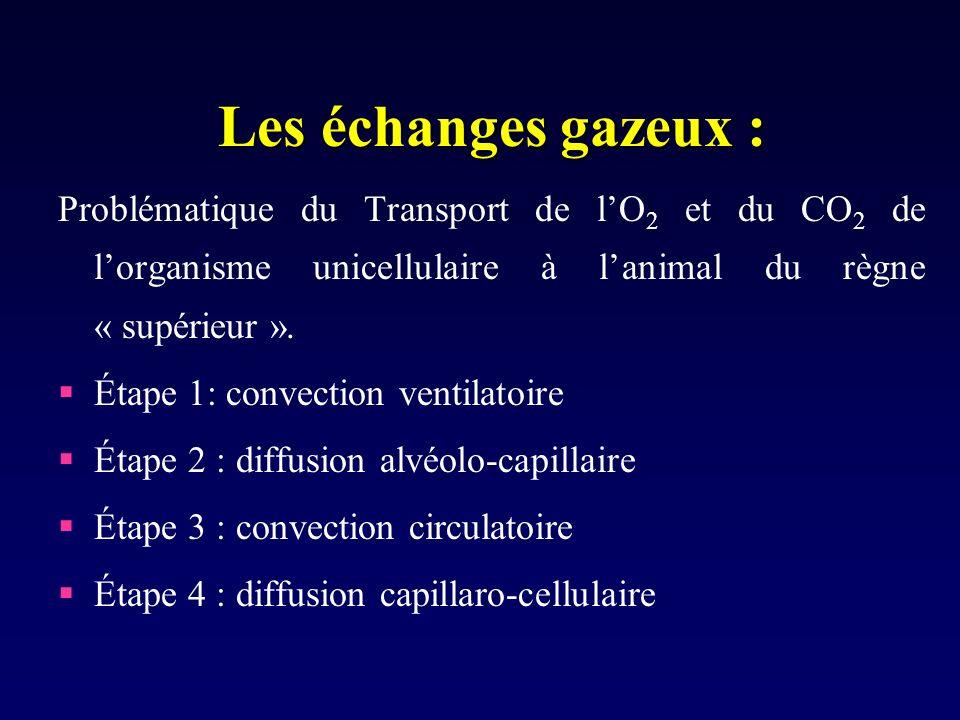 Les échanges gazeux : Problématique du Transport de lO 2 et du CO 2 de lorganisme unicellulaire à lanimal du règne « supérieur ». Étape 1: convection
