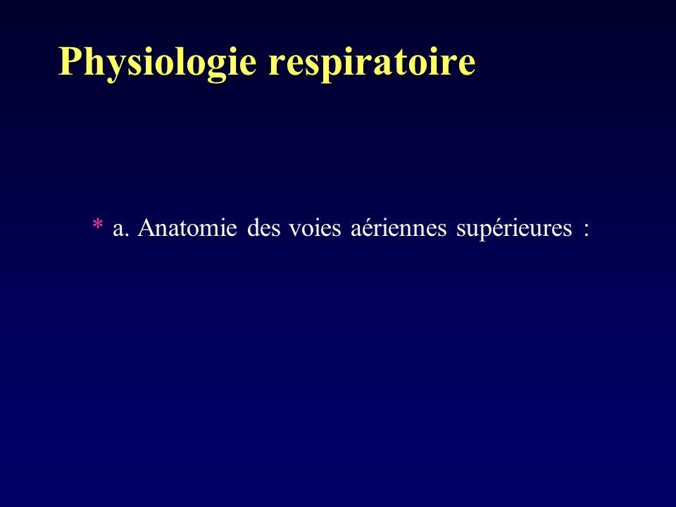Physiologie respiratoire *a. Anatomie des voies aériennes supérieures :