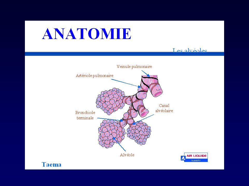 Physiopathologie respiratoire *b.Maladies restrictives i.