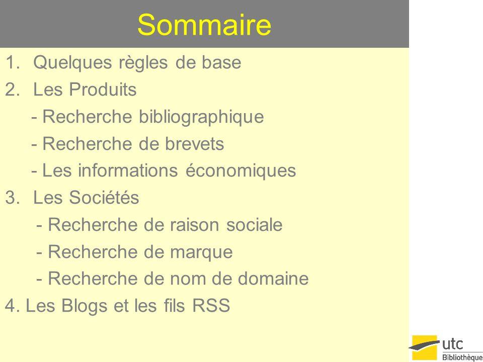 Sommaire 1.Quelques règles de base 2.Les Produits - Recherche bibliographique - Recherche de brevets - Les informations économiques 3.Les Sociétés - Recherche de raison sociale - Recherche de marque - Recherche de nom de domaine 4.
