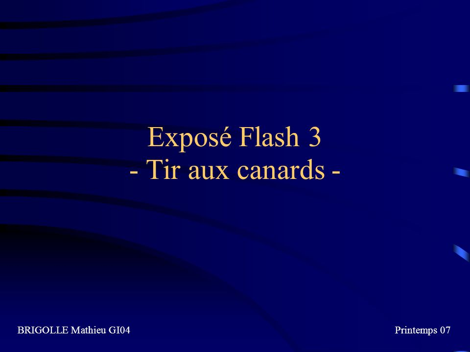 Exposé Flash 3 - Tir aux canards - BRIGOLLE Mathieu GI04Printemps 07