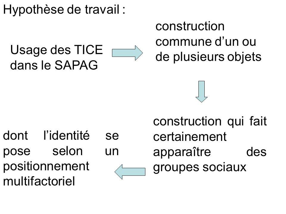 Hypothèse de travail : construction qui fait certainement apparaître des groupes sociaux Usage des TICE dans le SAPAG construction commune dun ou de p