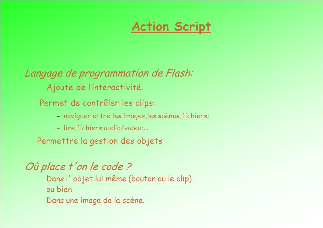 Action Script Langage de programmation de Flash: Ajoute de linteractivité. Permet de contrôler les clips: naviguer entre les images,les scènes,fichier