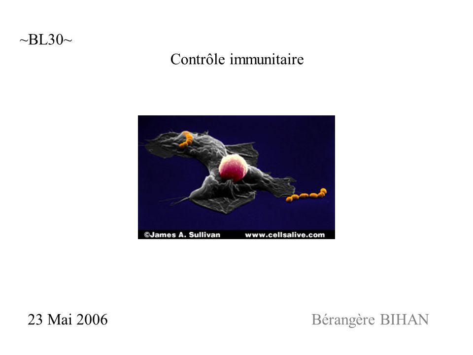 Contrôle immunitaire 23 Mai 2006Bérangère BIHAN ~BL30~