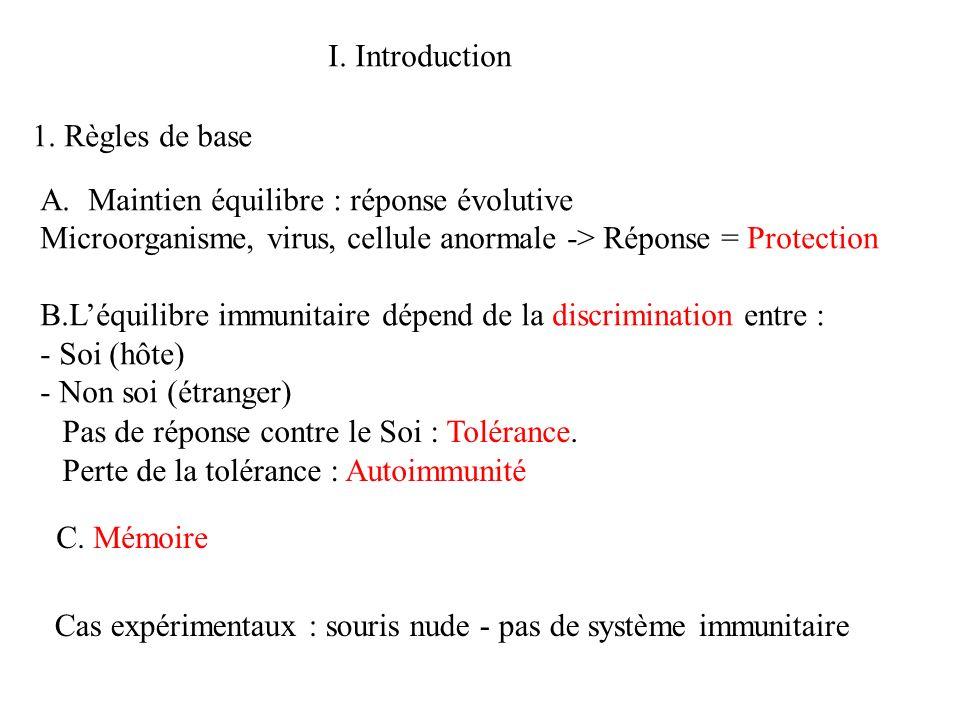 I. Introduction A.Maintien équilibre : réponse évolutive Microorganisme, virus, cellule anormale -> Réponse = Protection B.Léquilibre immunitaire dépe