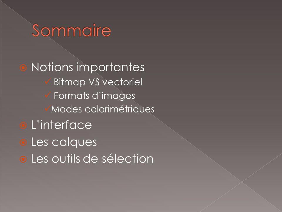 Notions importantes Bitmap VS vectoriel Formats dimages Modes colorimétriques Linterface Les calques Les outils de sélection