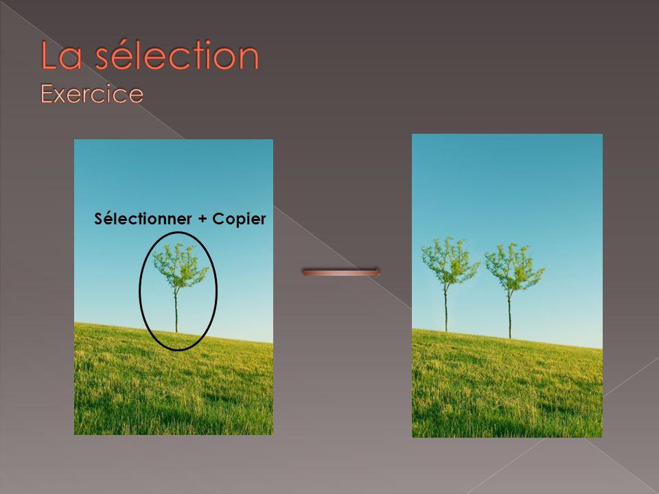 Sélectionner + Copier