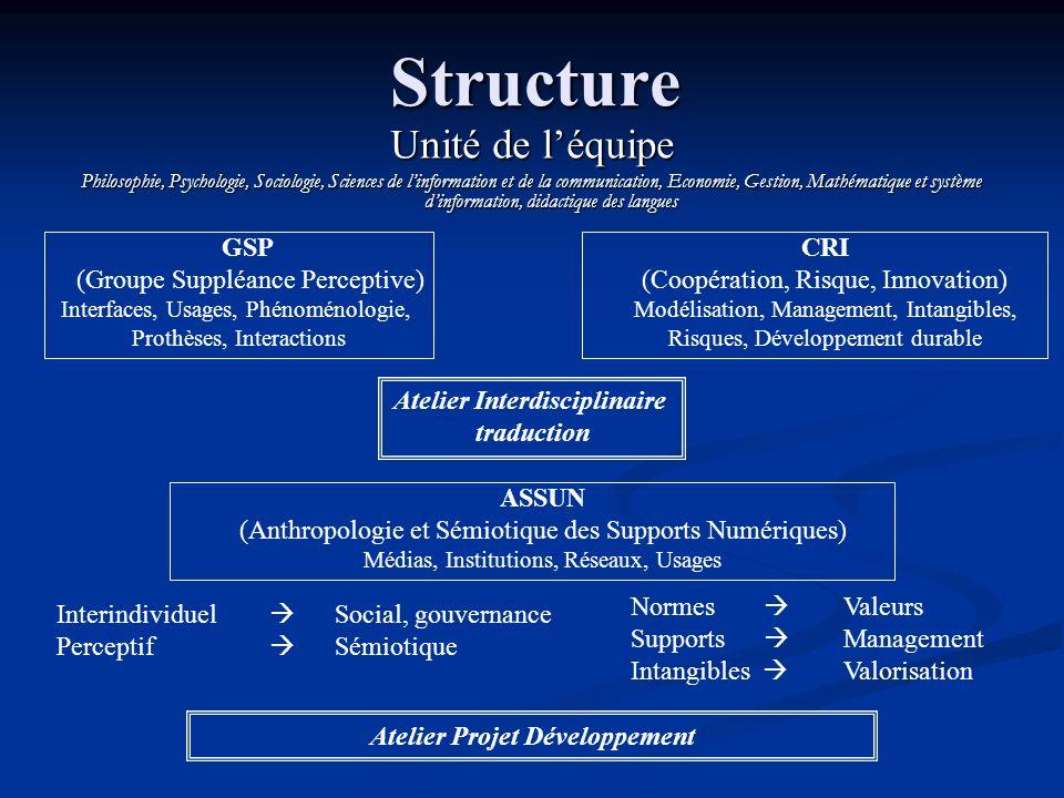 Structure GSP (Groupe Suppléance Perceptive) Interfaces, Usages, Phénoménologie, Prothèses, Interactions CRI (Coopération, Risque, Innovation) Modélis