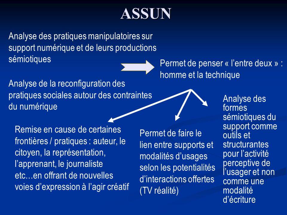 ASSUN Analyse des pratiques manipulatoires sur support numérique et de leurs productions sémiotiques Analyse de la reconfiguration des pratiques socia