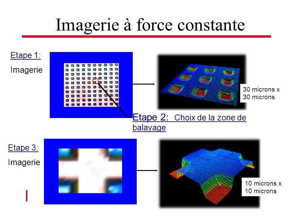 l Séminaire Roberval 4 Nov 2004 Etape 1: Imagerie Etape 2: Choix de la zone de balayage Etape 3: Imagerie 30 microns x 30 microns 10 microns x 10 microns Imagerie à force constante