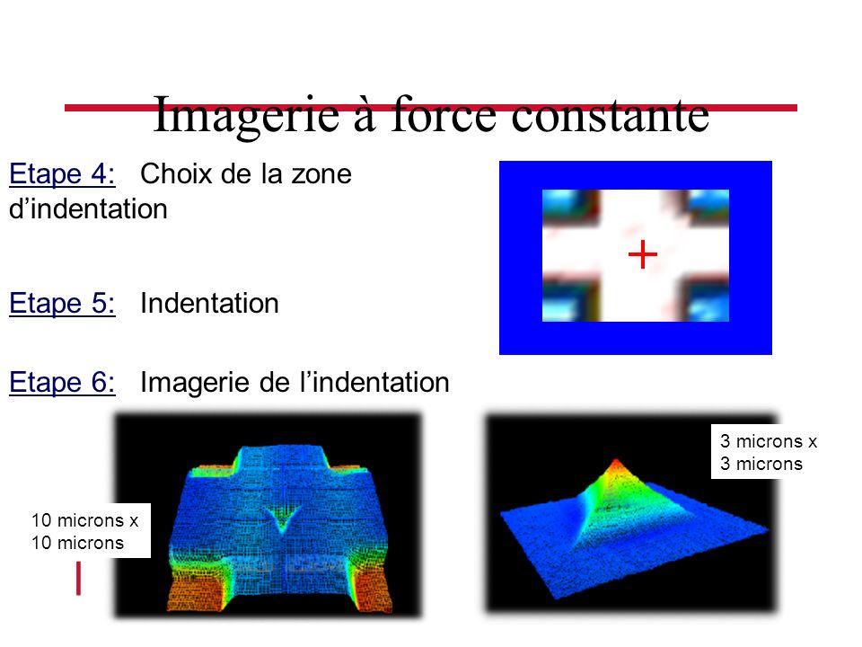 l Séminaire Roberval 4 Nov 2004 Etape 4: Choix de la zone dindentation Etape 5: Indentation Etape 6: Imagerie de lindentation 10 microns x 10 microns 3 microns x 3 microns Imagerie à force constante