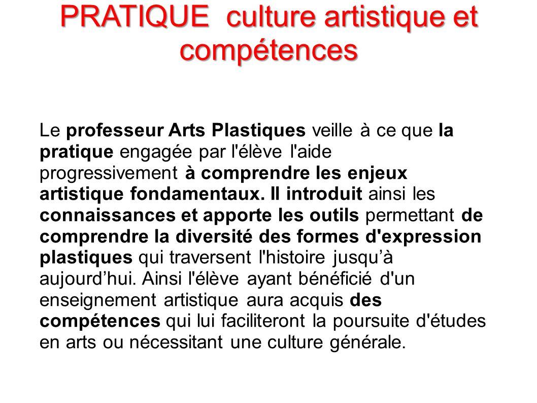 PRATIQUE culture artistique et compétences Le professeur Arts Plastiques veille à ce que la pratique engagée par l'élève l'aide progressivement à comp