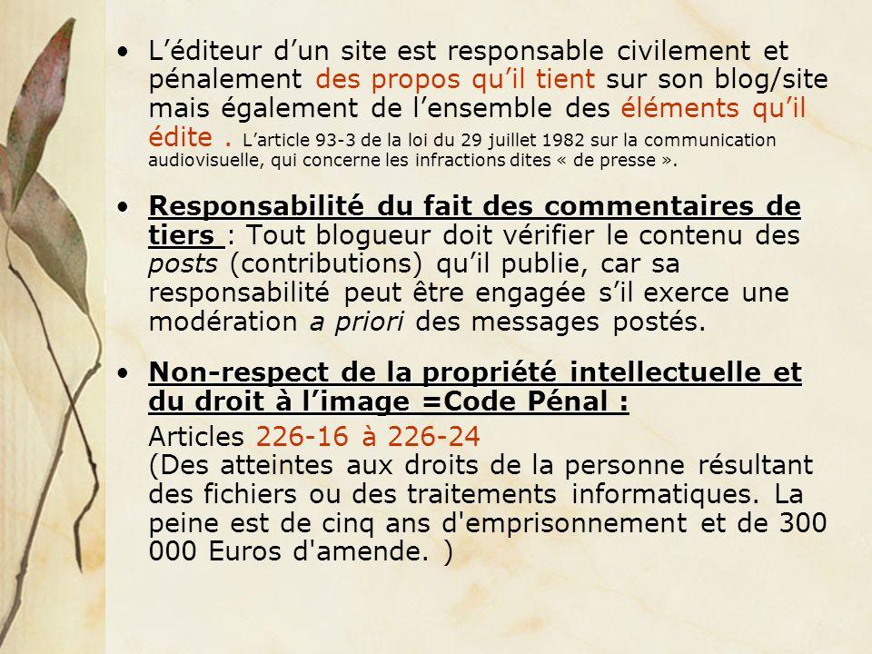 Léditeur dun site est responsable civilement et pénalement des propos quil tient sur son blog/site mais également de lensemble des éléments quil édite.