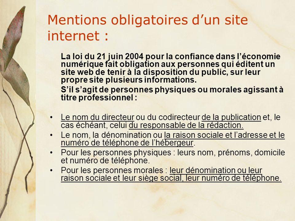 Mentions obligatoires dun site internet : La loi du 21 juin 2004 pour la confiance dans léconomie numérique fait obligation aux personnes qui éditent un site web de tenir à la disposition du public, sur leur propre site plusieurs informations.