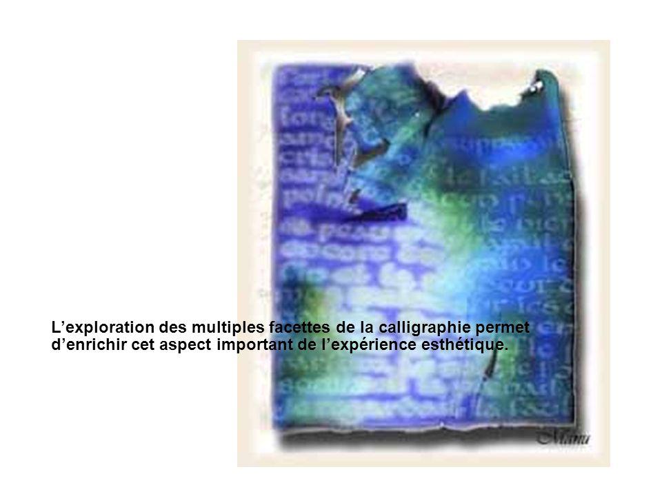 Lexploration des multiples facettes de la calligraphie permet denrichir cet aspect important de lexpérience esthétique.