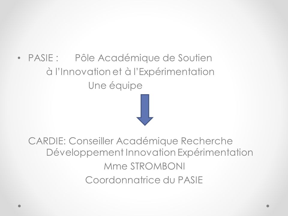 PASIE : Pôle Académique de Soutien à lInnovation et à lExpérimentation Une équipe CARDIE: Conseiller Académique Recherche Développement Innovation Exp