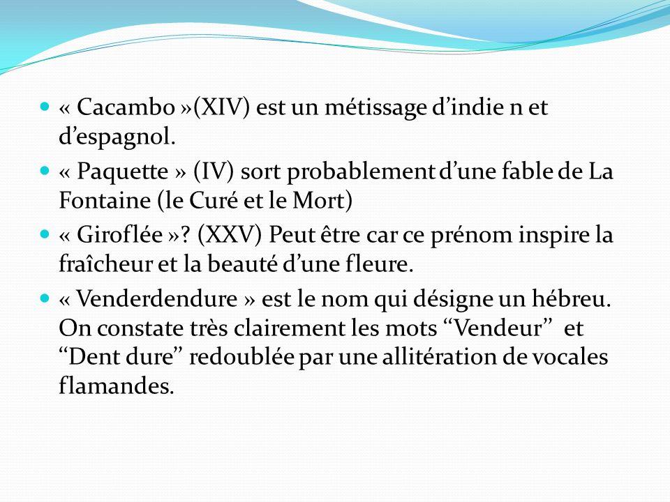 « Cacambo »(XIV) est un métissage dindie n et despagnol.