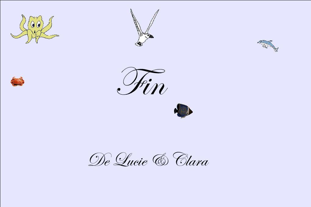 Fin De Lucie & Clara