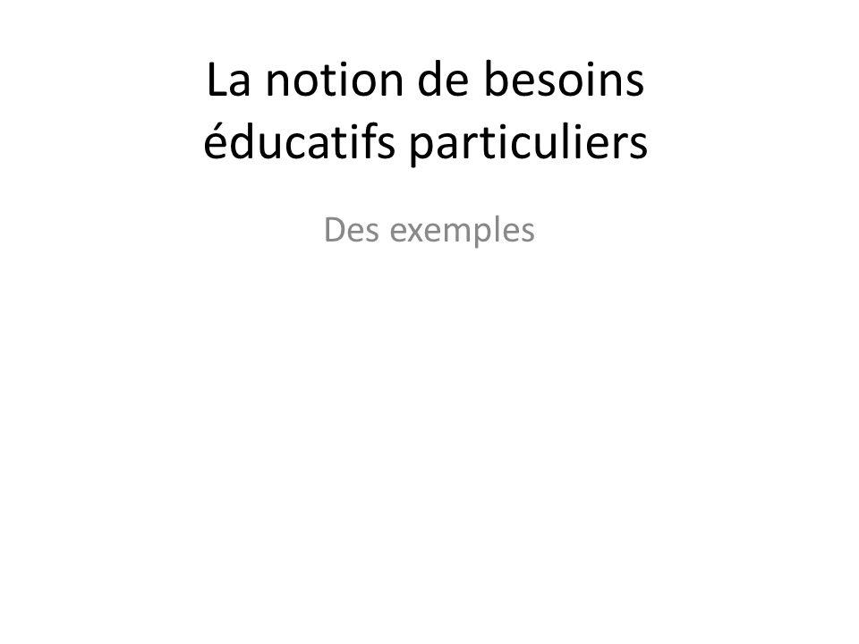 La notion de besoins éducatifs particuliers Des exemples