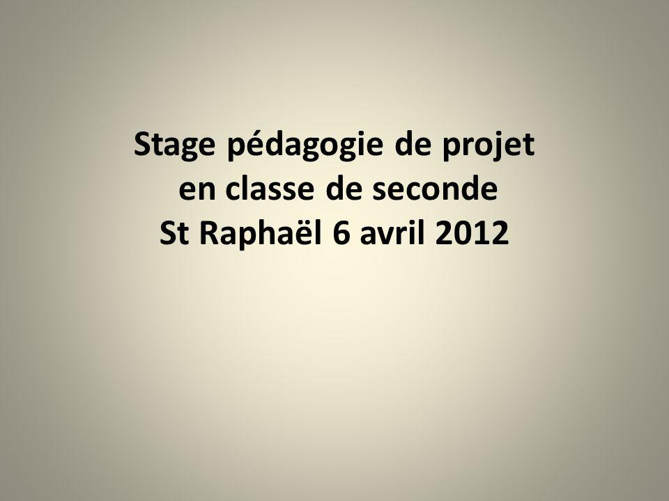 Stage pédagogie de projet en classe de seconde St Raphaël 6 avril 2012