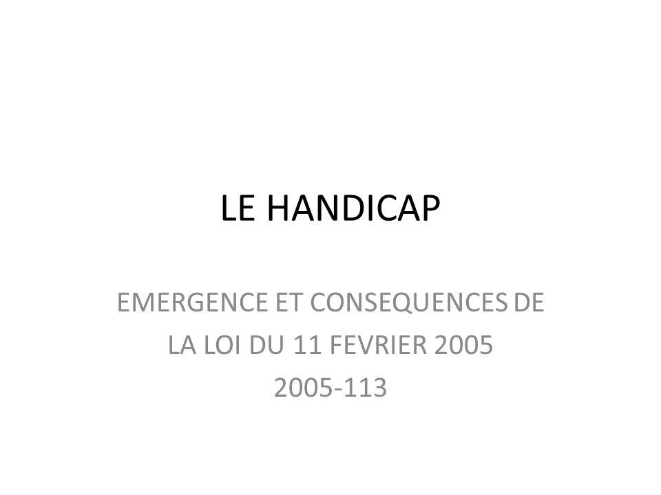 LE HANDICAP EMERGENCE ET CONSEQUENCES DE LA LOI DU 11 FEVRIER 2005 2005-113