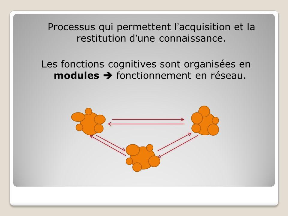 Processus qui permettent lacquisition et la restitution dune connaissance. Les fonctions cognitives sont organisées en modules fonctionnement en résea