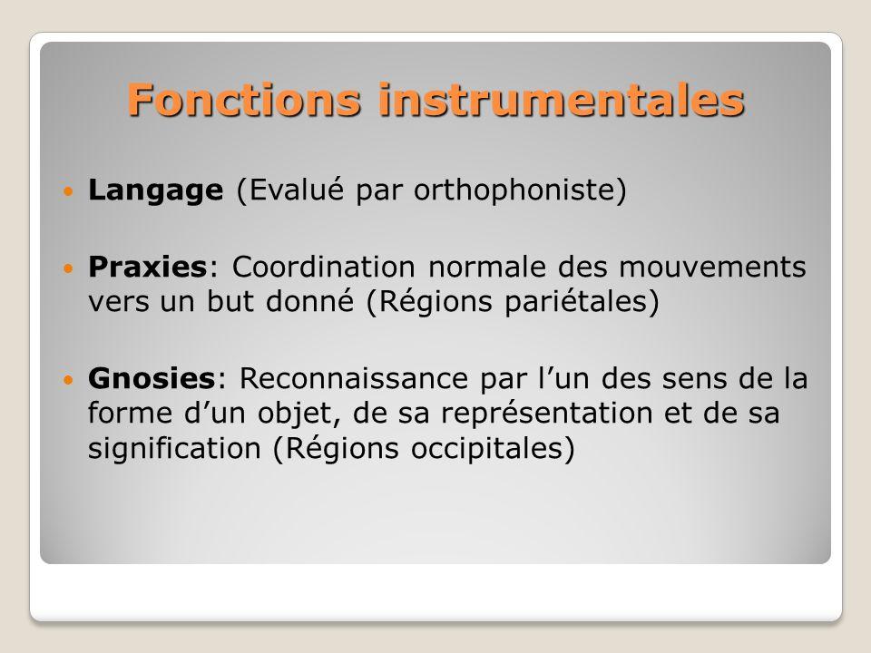 Fonctions instrumentales Langage (Evalué par orthophoniste) Praxies: Coordination normale des mouvements vers un but donné (Régions pariétales) Gnosie
