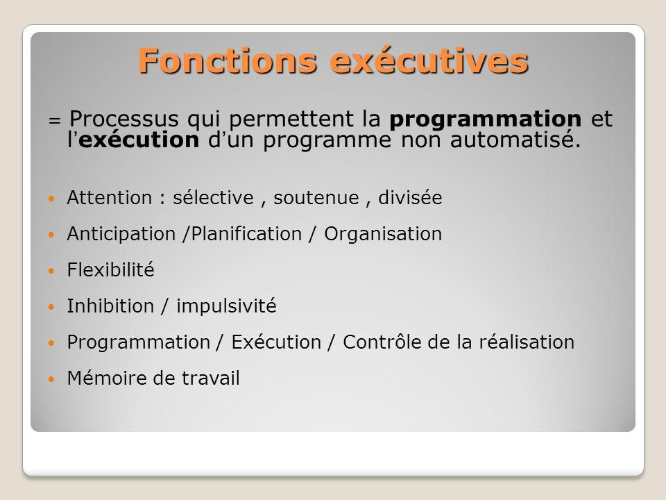Fonctions exécutives = Processus qui permettent la programmation et lexécution dun programme non automatisé. Attention : sélective, soutenue, divisée