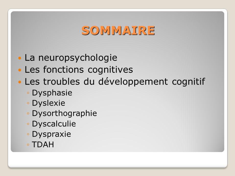 SOMMAIRE La neuropsychologie Les fonctions cognitives Les troubles du développement cognitif Dysphasie Dyslexie Dysorthographie Dyscalculie Dyspraxie