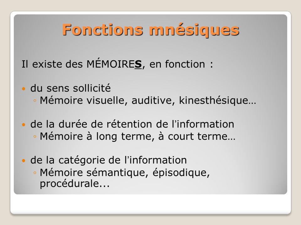 Fonctions mnésiques Il existe des MÉMOIRES, en fonction : du sens sollicité Mémoire visuelle, auditive, kinesthésique… de la durée de rétention de lin