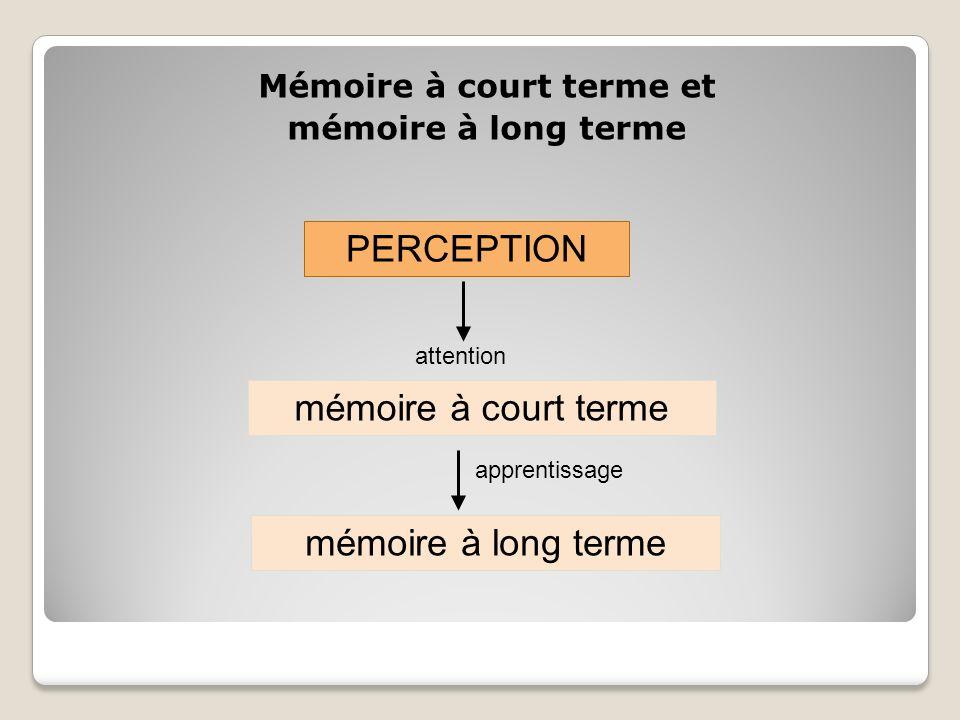 Mémoire à court terme et mémoire à long terme PERCEPTION mémoire à court terme mémoire à long terme attention apprentissage