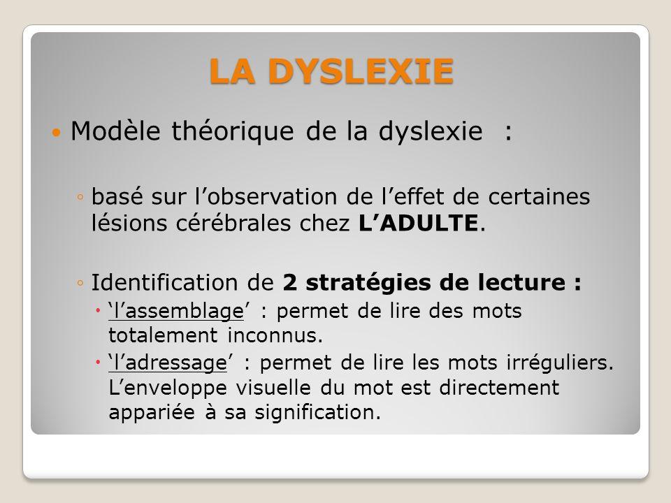 Modèle théorique de la dyslexie : basé sur lobservation de leffet de certaines lésions cérébrales chez LADULTE. Identification de 2 stratégies de lect