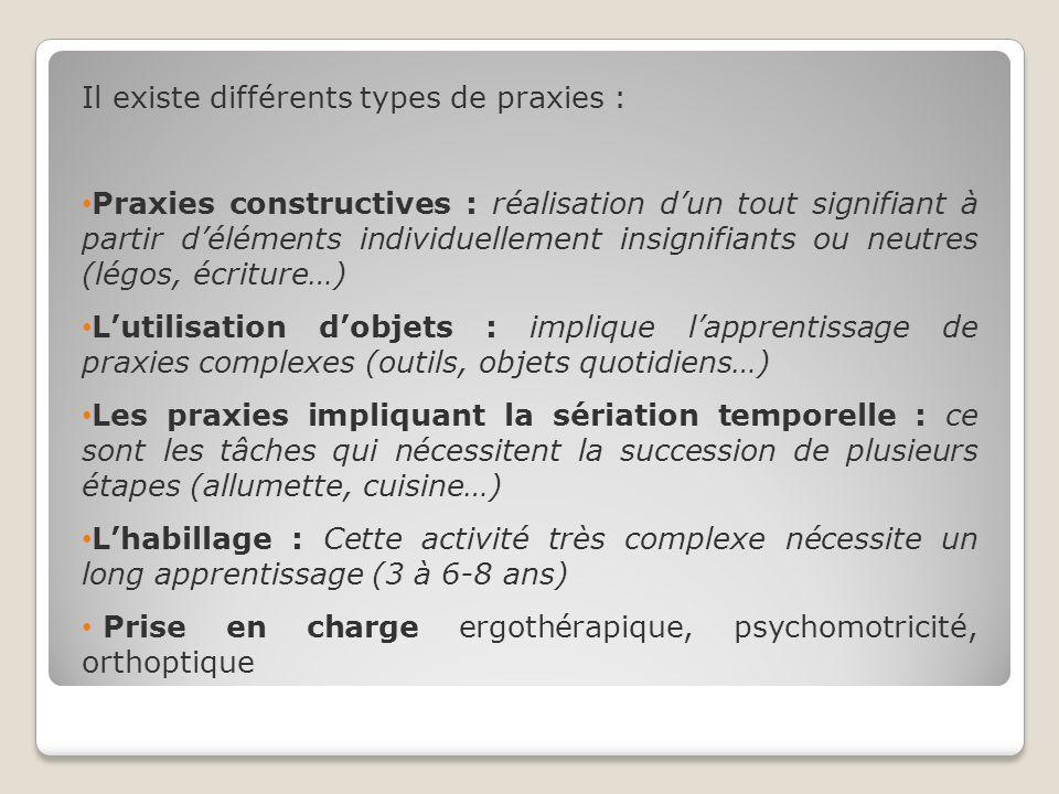 Il existe différents types de praxies : Praxies constructives : réalisation dun tout signifiant à partir déléments individuellement insignifiants ou n