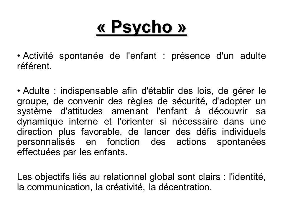 « Psycho » Activité spontanée de l'enfant : présence d'un adulte référent. Adulte : indispensable afin d'établir des lois, de gérer le groupe, de conv