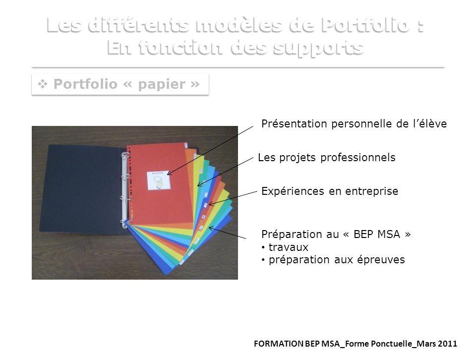 Portfolio « papier » Présentation personnelle de lélève Expériences en entreprise Préparation au « BEP MSA » travaux préparation aux épreuves Les proj